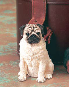 Dog Figurine-Pug
