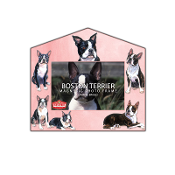 Magnetic Frame- Boston Terrier