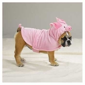 Piggy Pooch Costume